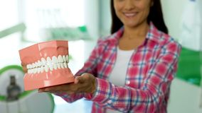 Smiling young female showing 3d model of jaw, dental care concept, oral hygiene. Stock photo stock photo