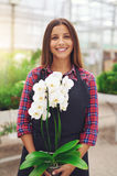 Smiling young florist holding an orchid Royalty Free Stock Images