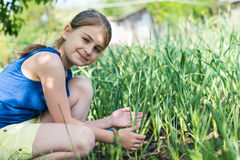 Smiling young girl checking onion plants Royalty Free Stock Photo