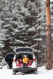 Smiling young girl resting in car back boot for luggage. Winter evergreen wood with huge pines stock photos
