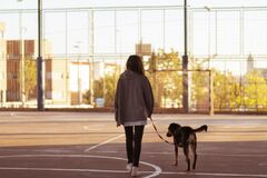 Smiling young girl walks with her dog in a sport field. in the street.