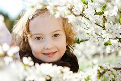 Portrait during spring time - white blossoms stock image