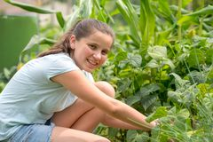 Smiling young girl working in the kitchen garden stock photo