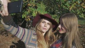 Smiling young girls taking selfie in an autumn park. Two blonde beauties having fun in autumn park stock footage