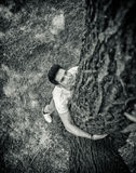 Smiling young man hugging a tree, looking up Stock Image