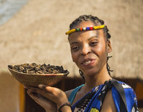 Smiling young woman Bantu nation serving eatable caterpillars for dinner. South Africa. royalty free stock photography