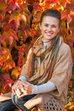 Smiling young woman in front of autumn foliage Royalty Free Stock Image