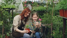 Smiling young woman and her cute child are using smartphone, touching screen and laughing inside greenhouse. Modern. Smiling young woman and her cute child are stock footage