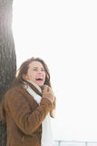 Smiling young woman leaning against tree in winter park Stock Image