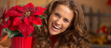 Smiling young woman looking out from christmas rose in christmas Royalty Free Stock Photography