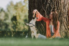 Cute lady is playing with her dog outdoors stock photography
