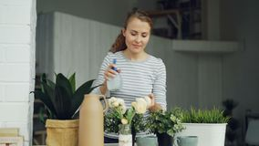 Smiling young woman is spraying green plants with water using spray bottle standing near table in modern loft style. Apartment. Youth, interior and household stock footage