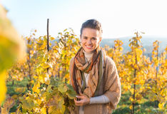 Smiling young woman winegrower standing in autumn grape field. Smiling young brunette woman winegrower standing in autumn grape field. Small business concept Stock Photos