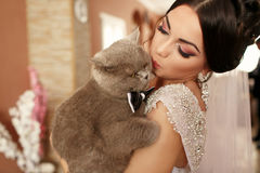 The smilling  bride keeps her cat Stock Photo