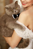 The smilling  bride keeps her cat Royalty Free Stock Photography