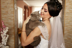 The smilling  bride keeps her cat Stock Image