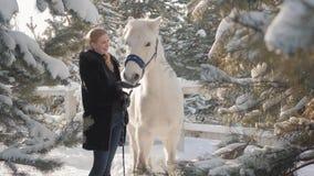 Smilling förtjusande blonda slaglängder och matningar hennes händer en härlig vit häst på en snöig landsranch Begrepp av hästen arkivfilmer