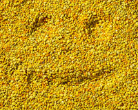 Smilling face on bee pollen surface, healthy life concept Stock Photo
