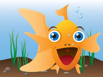 Smilling goldfish Royalty Free Stock Images