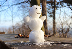 Smilling snowman Stock Image