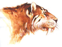 Smilodon illustrazione di stock