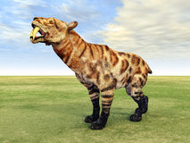 Smilodon Stock Images