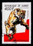 Smilodon förhistorisk djurserie, circa 1987 Royaltyfri Foto