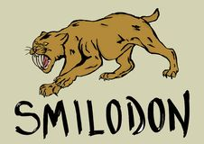 Smilodon Royalty Free Stock Photography