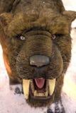 Smilodon Populator - saber-toothed tiger Royalty Free Stock Images
