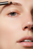 Sminkkonstnären applicerar krönsmink härlig framsidakvinna Perfekt smink Arkivbild