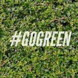 Sminuzzi l'etichetta vanno verde sul fondo della pianta immagine stock libera da diritti