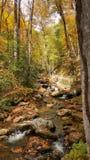 Smith Creek at Anna Ruby Falls (2) Stock Photo