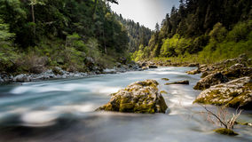Smith River Royaltyfri Foto
