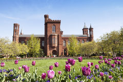 Smithsonian Building Royalty Free Stock Photography