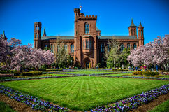 Smithsonian Castle with garden view Royalty Free Stock Images