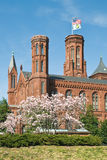 Smithsonian Institution Royalty Free Stock Photo