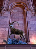 The Smithsonian Institution Stock Image