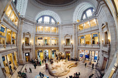 Smithsonian Museum of Natural History Stock Photo
