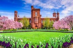 Smithsonian nella CC Immagini Stock