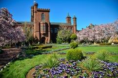 Smithsonian-Schloss mit Gartenansicht lizenzfreies stockbild