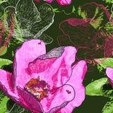 Sömlös bakgrund med blommor och fjärilar Arkivfoton