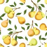 Sömlös bakgrund med päron. Royaltyfri Foto