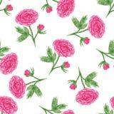 Sömlös blom- modell med av vattenfärgpionen Vektorillustration med rosa blommor Bakgrund för webbsidor som gifta sig invita Arkivbilder