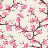 Sömlös blommamodell för körsbärsröd blomning Arkivfoton