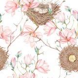 Sömlös modell av vattenfärgfågelredena på trädfilialerna med magnoliablommor, hand som dras på en vit bakgrund Royaltyfria Bilder