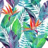 Sömlös modell för tropiska sidor din blom- illustration för bakgrundsdesign Arkivfoton