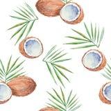 Sömlös modell med kokosnötter som målas i vattenfärg Vektor b Arkivfoto