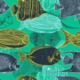 Sömlös modell med samlingen av den tropiska fisken Tappninguppsättning av hand drog marin- faunor Royaltyfri Bild