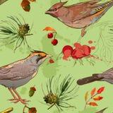Sömlös patterm med fågel- och höstbeståndsdelar Arkivbilder