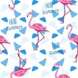 Sömlös vektorbakgrund, flamingo och triangel Arkivbilder